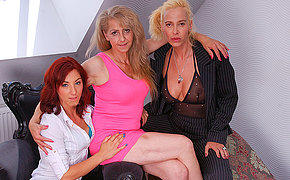 Those three ancient and fresh lesbians share their unshaved soaked holes